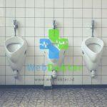 Ini Dia 5 Penyebab Sering Buang Air Kecil Yang Wajib Anda Ketahui
